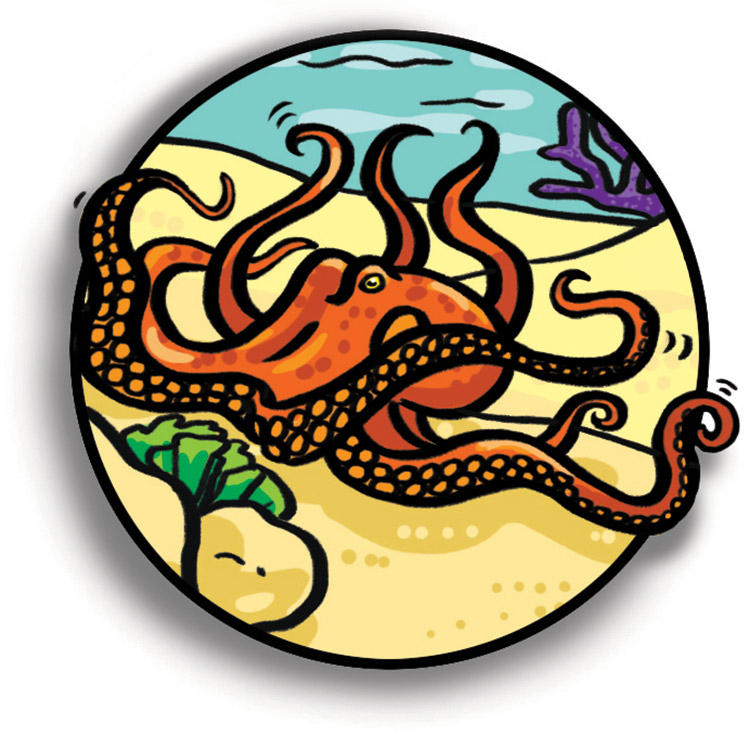 Octopus-Icon-web