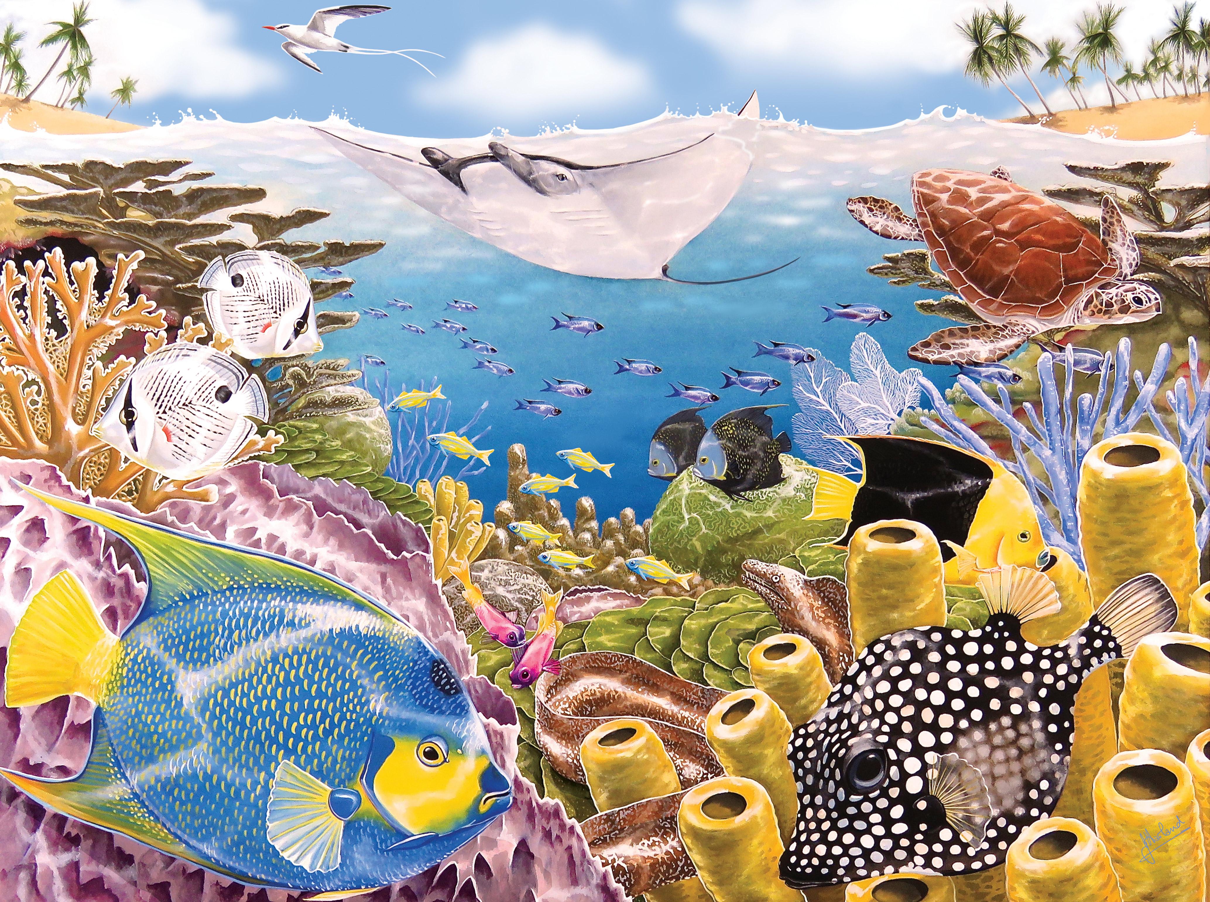 TobagoUnderwater-RGB-web